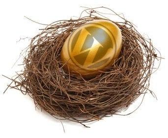 WordPress is your Golden Egg!