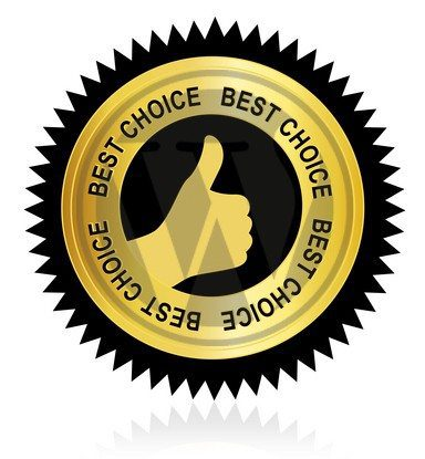 WordPress is the Best Choice