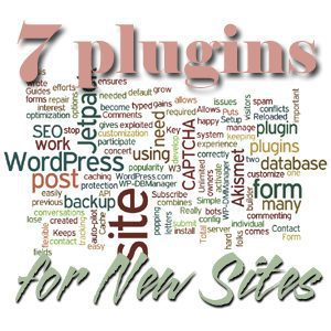 7 Plugins for New WordPress Sites