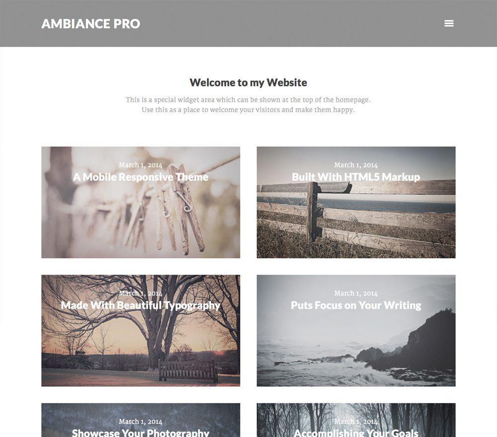 Ambiance Pro Theme