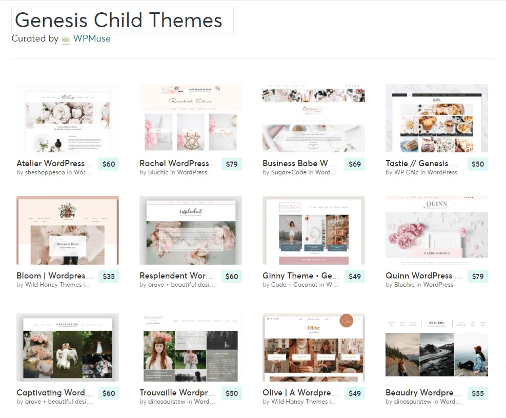 WordPress Genesis Child Themes